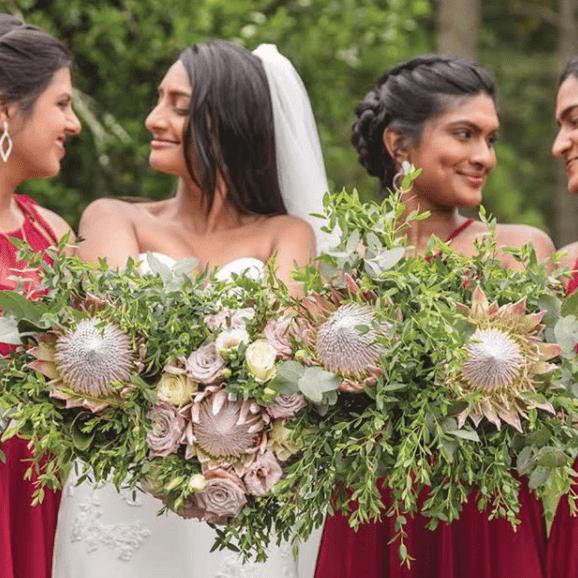 protea-pink-bride-white-red