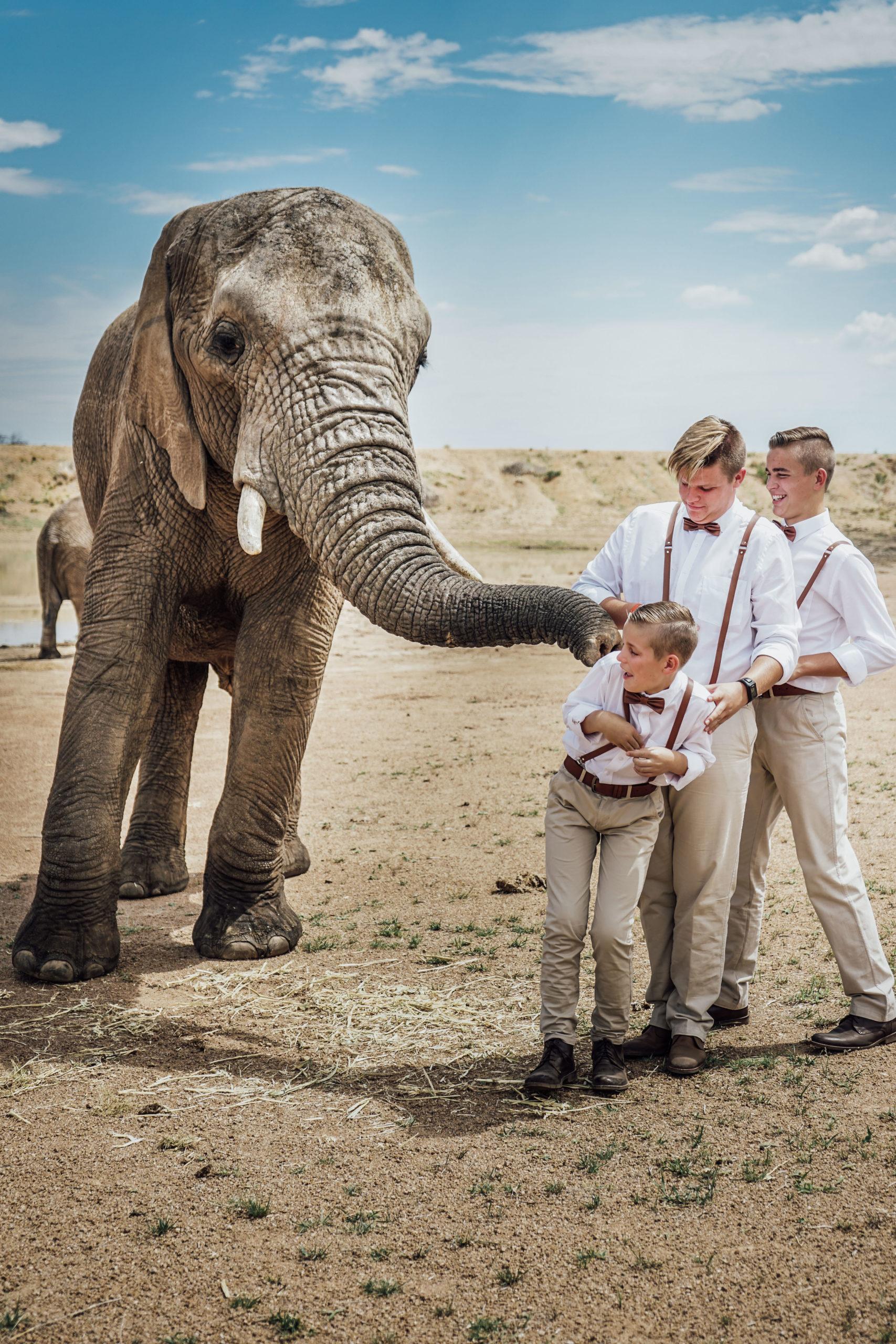 elephant-boys-dirt-fun