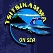 blue-wave-ocean-logo